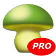 MushtoolPro.. file APK for Gaming PC/PS3/PS4 Smart TV
