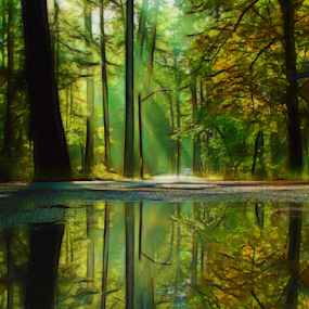 Forest reflections by Doug Clement - Landscapes Forests ( water, reflection, nature, forest, rain, renewal, green, trees, forests, natural, scenic, relaxing, meditation, the mood factory, mood, emotions, jade, revive, inspirational, earthly, relax, tranquil, tranquility )