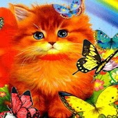 Cat Among Colorful Butterflies