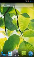 Screenshot of Green Leaves HD