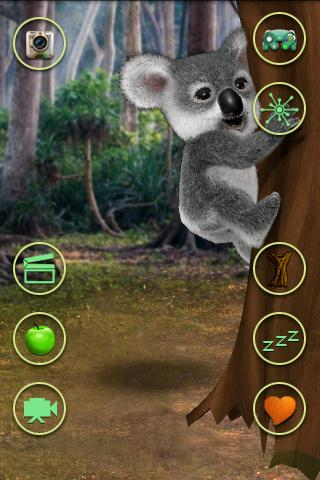 Talking Koala Bear - screenshot