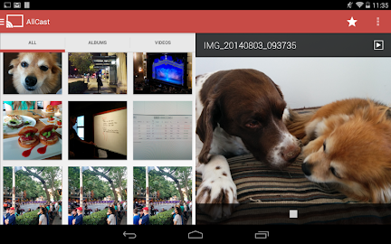 AllCast Premium Screenshot 11