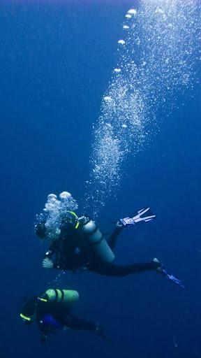 Xiphias Diving