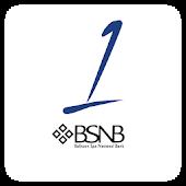 BSNB HSA