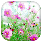 Doces flores fundo dinâmicar icon