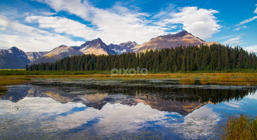 by V Alysse Zimmerman - Landscapes Mountains & Hills
