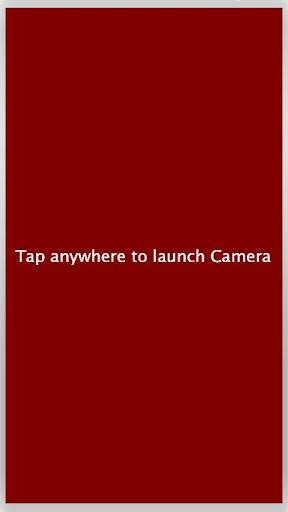 CameraSample
