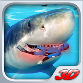 Shark Beach Attack 3D