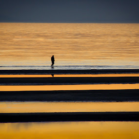 man alone.... by Tanya Popove - Landscapes Beaches ( water, walking, thinking, sunset, beach, alone, man )