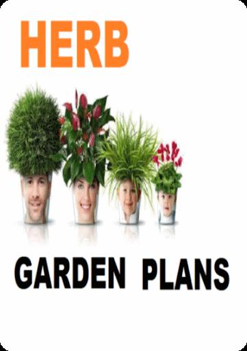 The Herb Garden Tips