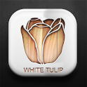 WhiteTulip GO LauncherEX Theme icon