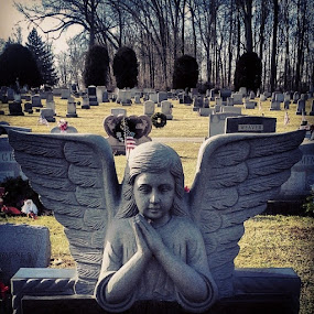 Mellow Maryland angel grave marker by Dianne Collins - City,  Street & Park  Cemeteries (  )