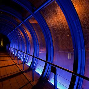 Munich by Claes Wåhlin - Buildings & Architecture Bridges & Suspended Structures ( hauptbahnof, blue, münchen, night, germany,  )