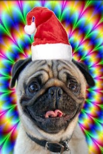 Christmas talking dog - screenshot thumbnail