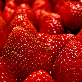 Very Berry by Becky McGuire - Food & Drink Fruits & Vegetables ( plant, cook, fruit, mcguire, nutrient, becky mcguire, canvas, yum, yummy, kitchen, strawberry, eat & drink, farm, berry, red, tvlgoddess, nature, fresh, jay goyani, food & beverage, eat, produce, becky, meal,  )
