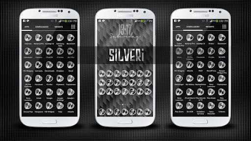 SILVERi Icons Theme