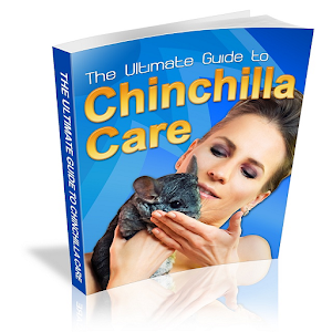 chinchilla single parent personals Dating can be tough, and dating a single parent is even tougher it requires a different dating skill set that includes patience and understanding, not to mention coping with an ex that might still be in the picture.