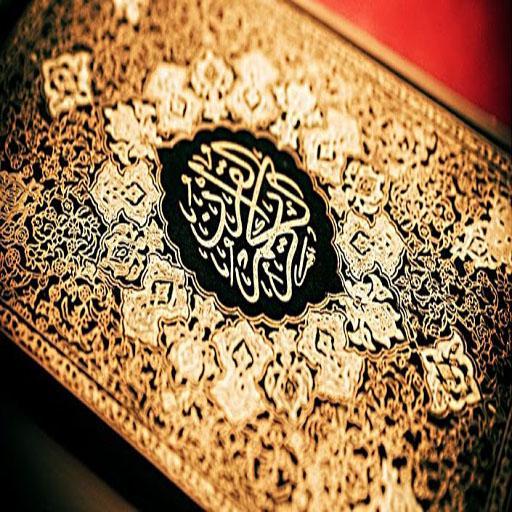 Quran Recitation by Al Ghamdi