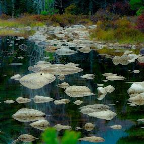 Mystery lake by Plamen Valkovski - Landscapes Waterscapes