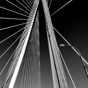 Over Charleston by Christopher Charlton - Buildings & Architecture Bridges & Suspended Structures ( charleston, black and white, art, bridge, united states )