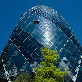 Cleaning the Gherkin by Mike Hayter - Buildings & Architecture Office Buildings & Hotels ( building, blue sky, gherkin, london, window cleaning )