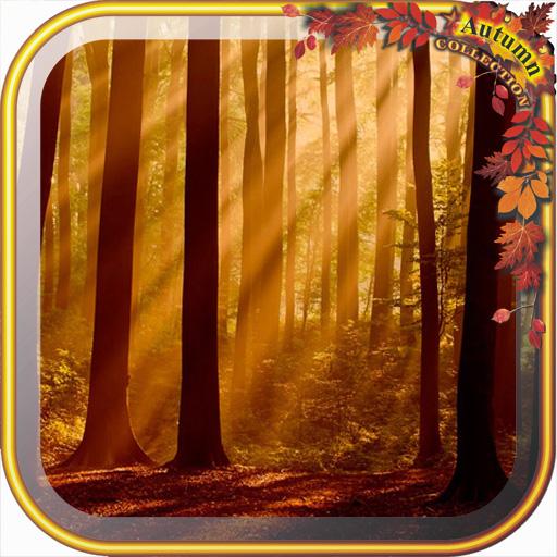 Top10 Autumn wallpaper Gallery