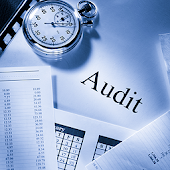 Audit Information System