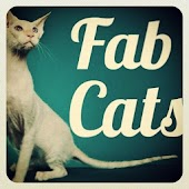 Fab Cats sounds videos photos