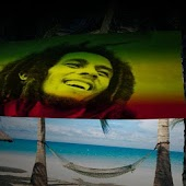 Marley Flag Live Wallpaper