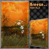 Breeze-Windy Nature