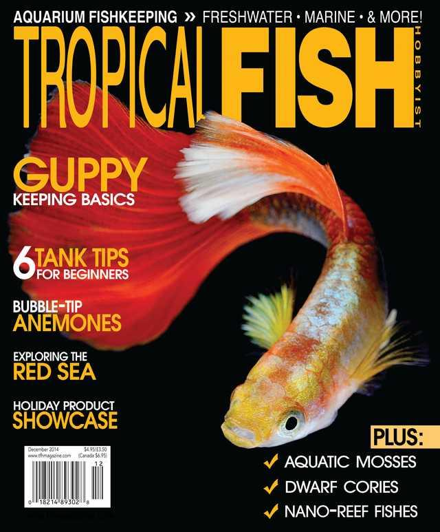 Tropical fish hobbyist android apps on google play for Tropical fish magazine