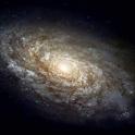 Астроном icon