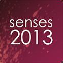 Senses 2013