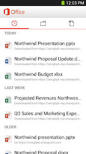 Microsoft Office Mobile Screenshot 5