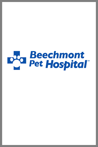 Beechmont Pet