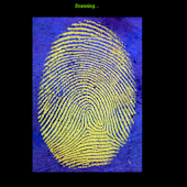 Finger Scan