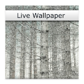 Snowy Trees Live Wallpaper