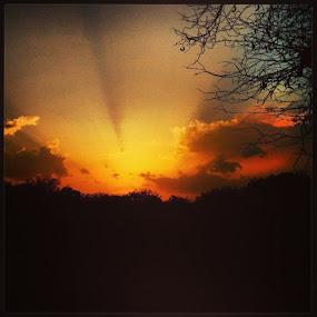 by Nitish Chandela - Landscapes Sunsets & Sunrises ( instcool, surpriseme, summers, atajmer, clickforlike, insanity, photogrphy, loveis, photography, sunet, nikon, lifesgood, in, ajmer )