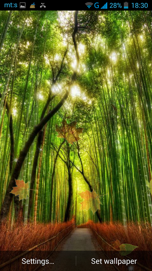 Forest Live Wallpaper  screenshotForest Live Wallpaper   Android Apps on Google Play. Forest Hd Live Wallpaper Free Apk. Home Design Ideas