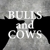 Bulls And Cows - Online