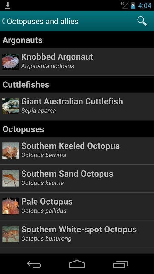 Bunurong Marine Field Guide - screenshot