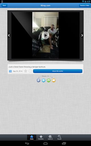 玩免費媒體與影片APP|下載Wimp.com - Official Mobile App app不用錢|硬是要APP