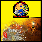 Authentic Shaolin Kung Fu icon