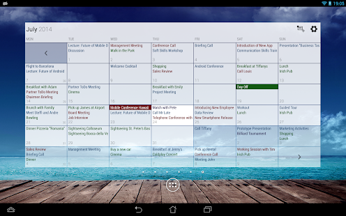 Business Calendar Screenshot 14