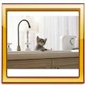 Cats Free Live Wallpaper logo