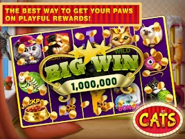 Screenshot of Cats Slots Casino Vegas Free