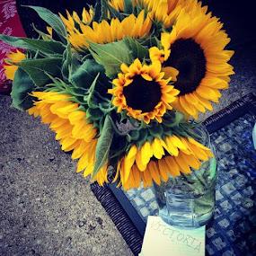 Sunflowers by Victoria Loos - Flowers Flower Arangements