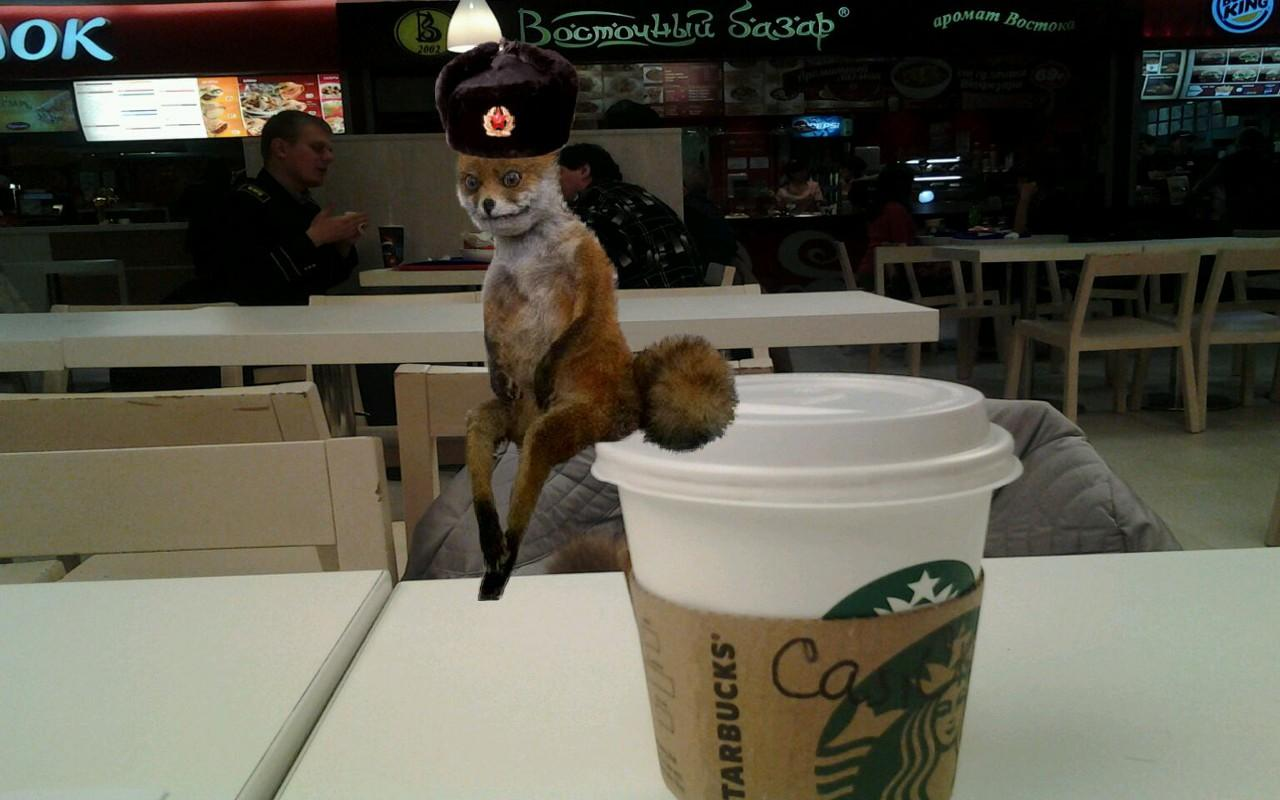 Stoned Fox - screenshot
