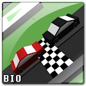 Wrong Way Race icon