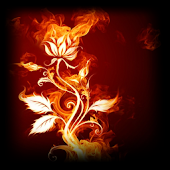 3D Rose of Fire LWP